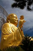 picture of lats  - Golden Buddha holding the golden lotus from the up angle at the Zen Buddhist temple Van Hanh in Da Lat - JPG