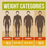 picture of obese man  - Body mass index retro infographics poster - JPG
