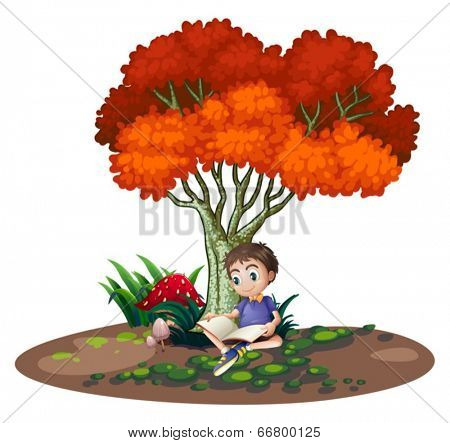 Illustration of a boy reading under the tree on a white background