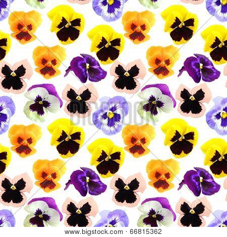 Pattern Of Pansyes Flowers