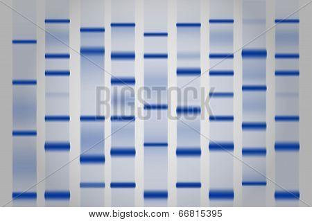 Gel Electrophoresis Separation Electrophoretogram