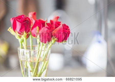Bouquet Of Blossoming Red Roses In Vase