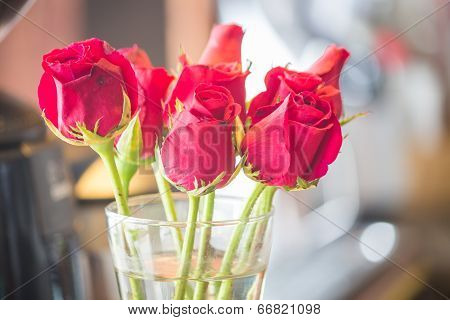 Blossoming Red Roses In Vase