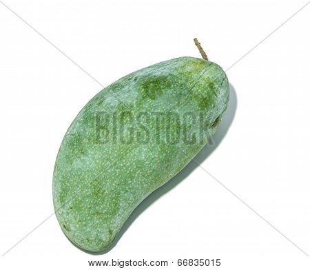 Fresh green mango isolated on white background.