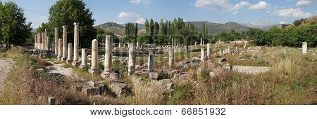 Panorama Of Ancient Agorawith Dorian  Columns Of  Aphrodisias,