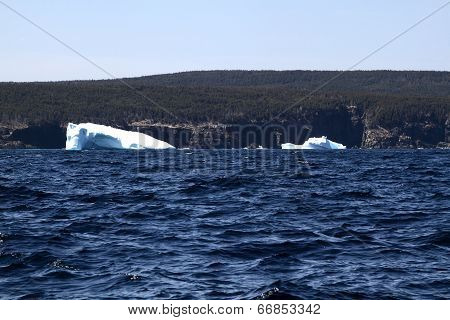 Remaining Of Big Icebergs Reached The Shore Of Newfoundland