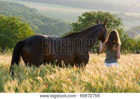 woman and horse training during sunset
