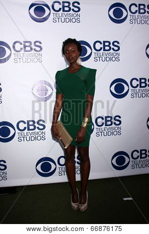 LOS ANGELES - MAY 19:  Anna Diop at the CBS Summer Soiree at the London Hotel on May 19, 2014 in West Hollywood, CA