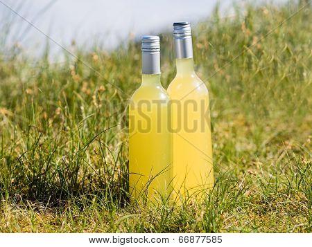 Bottles With Fresh Elderflower Lemonade