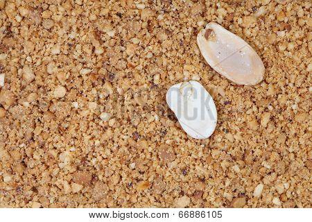 close - up tasty roasted ground peanuts