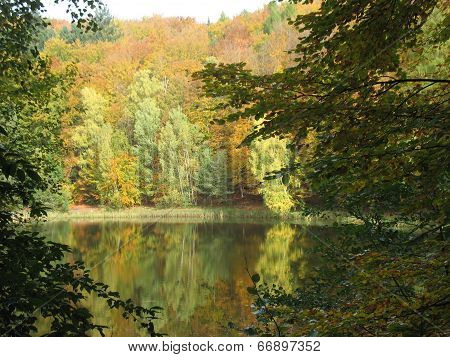 Beautiful Herbstimpression