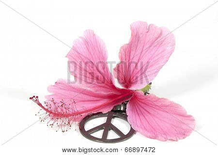 Pink Hibiscus Flower With Silver 1960's Peace Pendant