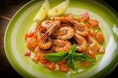 image of crustaceans  - dish of cooked crustaceans with tomato sauce - JPG