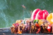 pic of braai  - Tasty skewers on garden grill - JPG