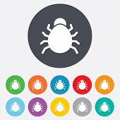 stock photo of disinfection  - Bug sign icon - JPG