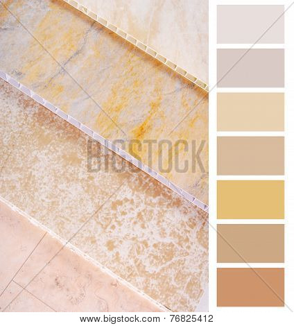 complimentary chart palette