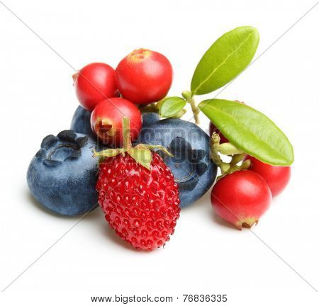 Forest wild berry cowberry, strawberry and blueberry with leaves isolated.