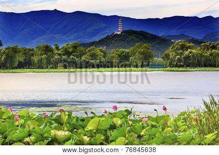 Yue Feng Pagoda Lotus Garden Reflection Summer Palace Beijing China