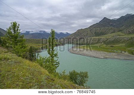 Katun River On An Overcast Day. Altai Mountains.