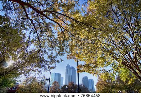 Autumn In Charlotte North Carolina