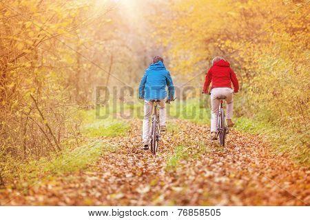 Active seniors ridding bike
