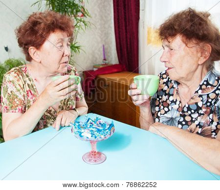 Two seniors drinks tea. Old woman talking. Friendship elderly