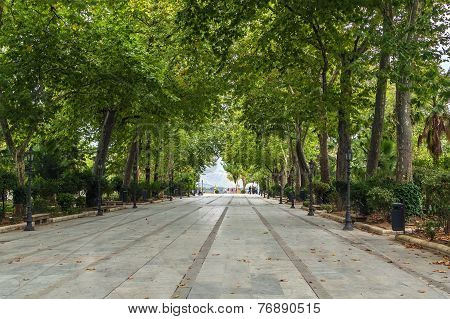 Alley In The Park, Roda, Spain