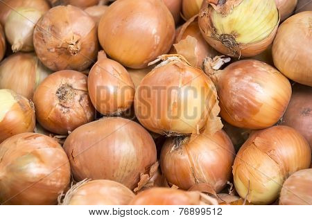 background of fresh vegetables onion