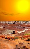 pic of petrified  - Sunset scenic landscape of ancient petrified forest in Arizona - JPG