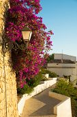 foto of costa blanca  - Narrow street of idyllic Altea old town Costa Blanca Spain - JPG
