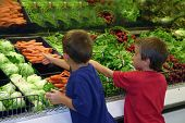 stock photo of grocery-shopping  - kids at grocery store shopping in the produce - JPG
