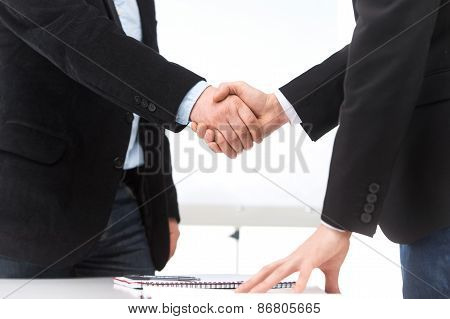 Business People Shaking Hands In Office. Businessman Shaking Hands To Seal Deal With His Partner