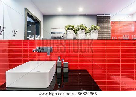 Bathroom Sink In Red