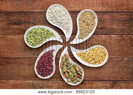 variety of beans, lentils and pea in teardrop shaped bowls against rustic wood, top view