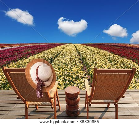 Two chaise lounges for rest stand on scaffold at a picturesque flower field. On one chaise lounge the elegant straw hat hangs. Spring buttercups grow multi-colored strips