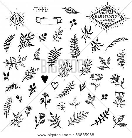 Set of Vintage Floral Hand-Sketched Elements. Flowers, Hearts, Calligraphic Elements, Labels, Logo, Catchwords, Wreaths and Bursting Rays for Retro Design.