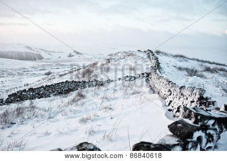 Wintry snow scene