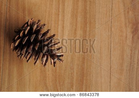 Single Cedar Pine Cone on left side of wood background