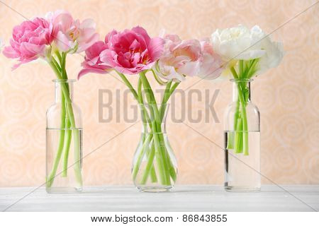 Beautiful tulips in glass vases on light color background