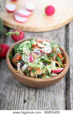 Vegetable Salad With Radish