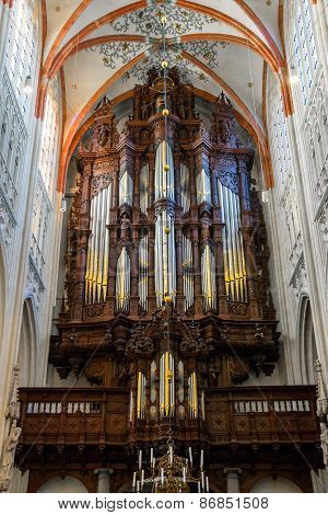Organ In The Cathedral Dutch City Of Den Bosch