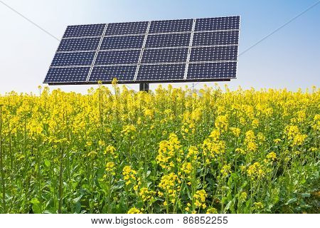 Solar Panels Over Spring Landscape