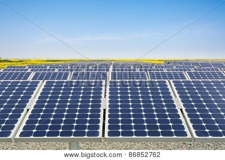 Solar Power Plant In Spring