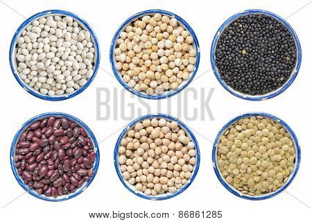 Different Legume