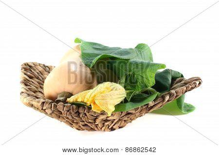 Butternut Pumpkin With Leaves