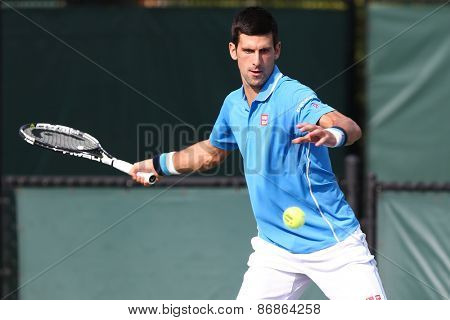 KEY BISCAYNE, FL-MAR 27: Novak Djokovic of Serbia returns a shot from during day five of the Miami Open at Crandon Park Tennis Center on March 27, 2015 in Key Biscayne, Florida.