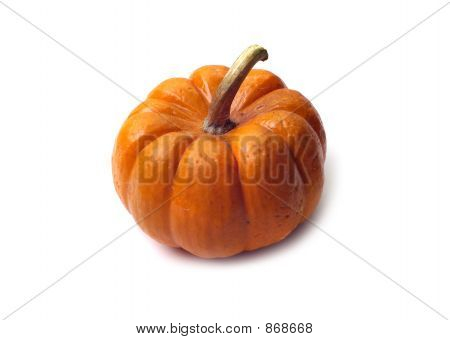 Isolated Pumpkin