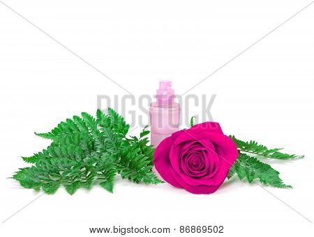 Perfume Bottle With Fresh Purple Rose And Fern Leaves