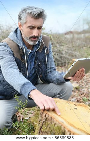Environment scientist looking at tree trunk and using tablet