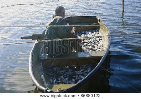 Fisher With Catch Of Fish